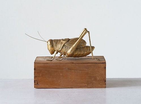Pinecrest Collection - lucky gold cricket