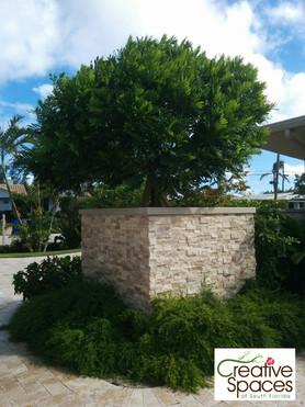 Harbour Beach modern tropical