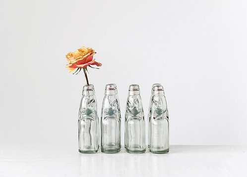 Palmetto Collections- classic soda bottle