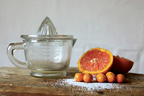 Palmetto Collections- glass hand juicer