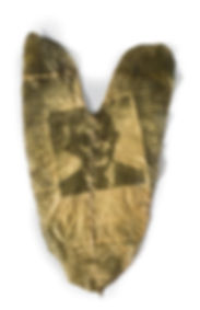 07-fc-perecivel-Mão de ferro-fitotipia-2