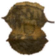 06-fc-perecivel-homem da foice-Ancuri-fi