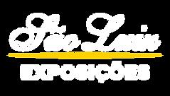 CSL - EXPOSICOES.png