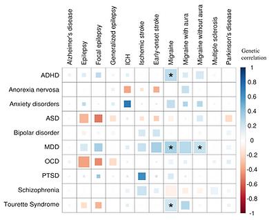 Psych_neurological_genetic_correlations.