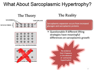 Myofibrilläre versus sarkoplasmatische Hypertrophie