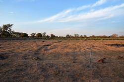 Ampliación superficie cultivable