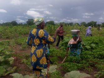 Las mujeres de Kanso siguen recibiendo formación agrícola