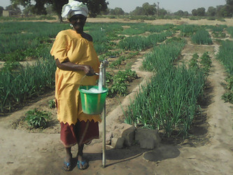 Iniciamos el proyecto para la nutrición en Kanso