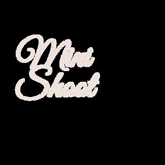 mini shoot.png