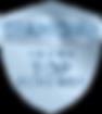 diamond badge post 100.png