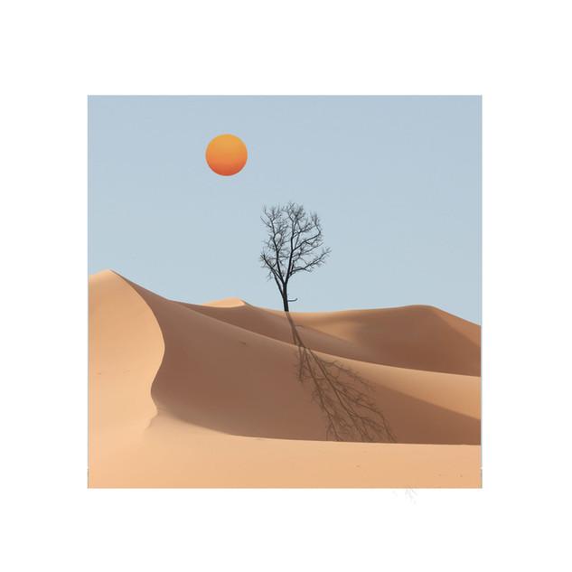 Francesca Sacco - Desert