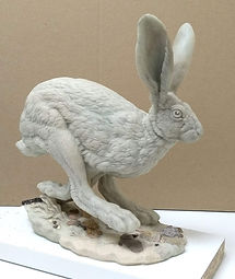 Hare running wax