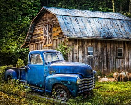 david textile blue truck panel.jpg