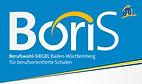 Boris_BerufswahlSigel.jpg