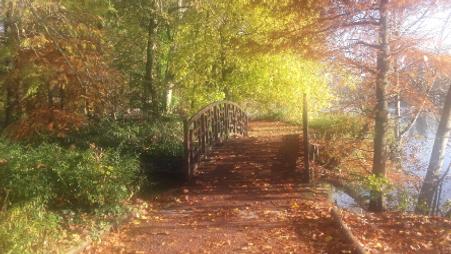 Pont de l'automne