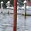 Thumbnail: Windsock Poles