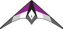 TICA2020 Purple