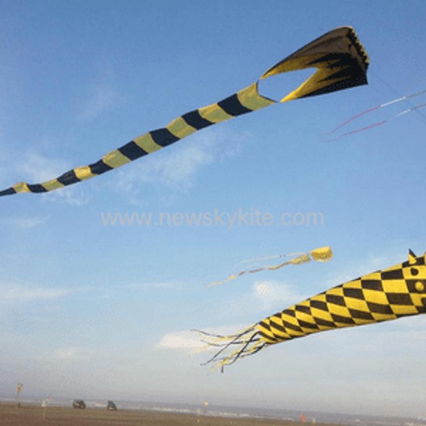 Chatham Family Kite Festival