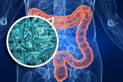 DN46 - Sequenciamento Genético de Microbioma Intestinal