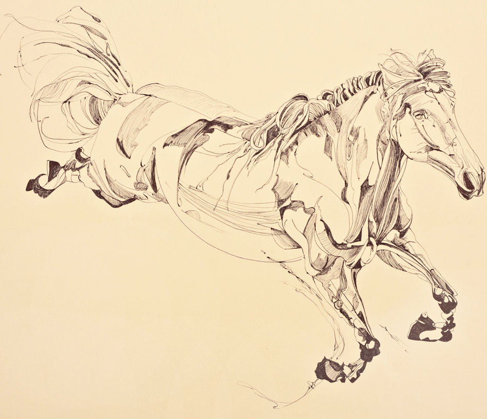 Study of leaping thoroughbred