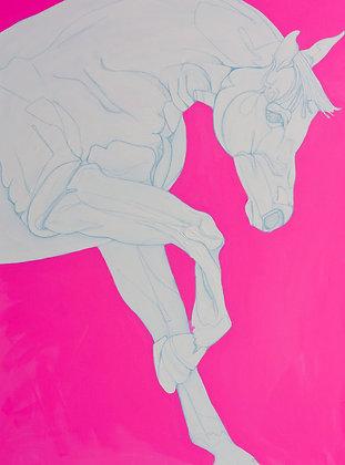 Porcelain & Pink