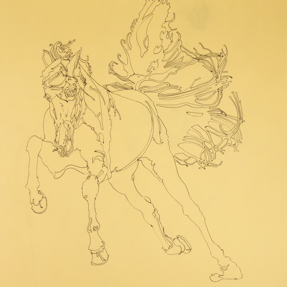 Untitled horse sprinting