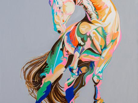 Sabre - an equine gladiator