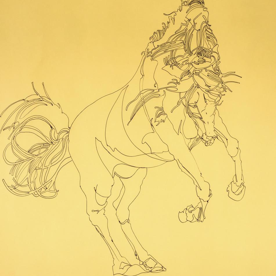 Untitled horse bowing
