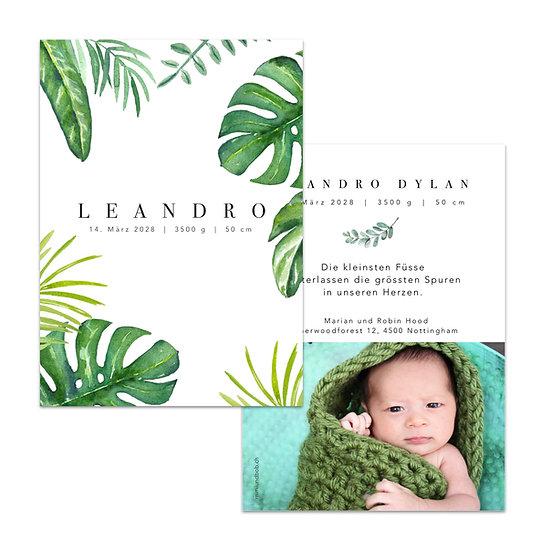 Geburtskarte Babykarte mit Boho Blättern Monstera Fensterblatt Blätter grüne Urwaldblätter tropische
