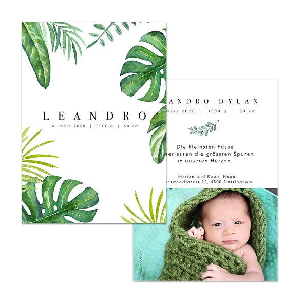 Geburtskarte Blätter Urwaldblätter Tropische Monstera Fensterblatt Dschungel Schweiz