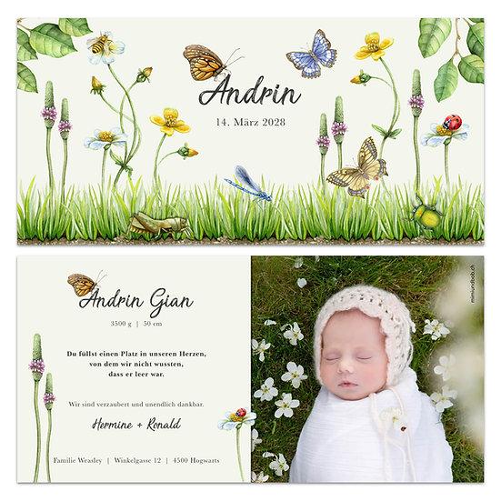 Geburtskarte Babykarte Wiese Wiesenblumen mit Schmetterlingen und Marienkäfer