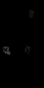 urwaldriese baum pflanzen.png