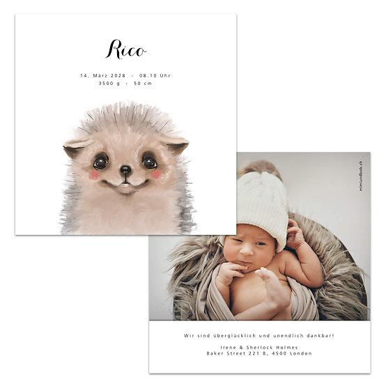 Geburtskarte Babykarte Igel Igelchen Wasserfarbe