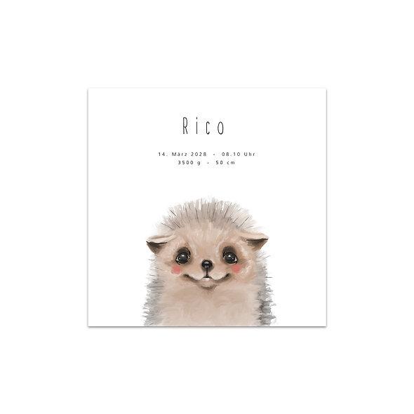 "Geburtskarte Einzelkarte ""Igel Rico"""