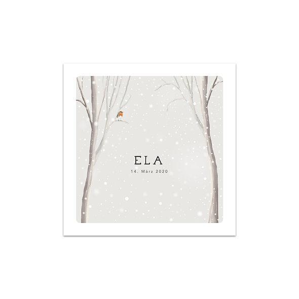 Geburtskarte Schnee Winter Rotkehlchen