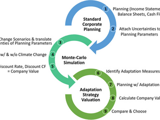 Valuation of Climate Change Impacts and Adaptation