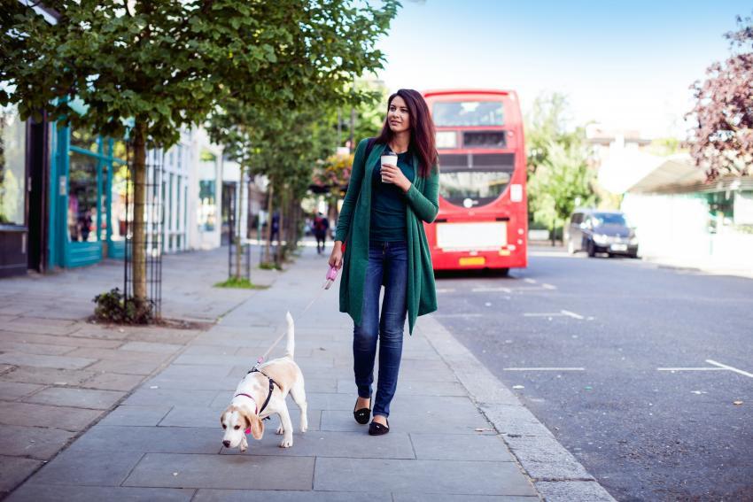 imagedogswoman-walking-dog-city-vacationblog.jpg