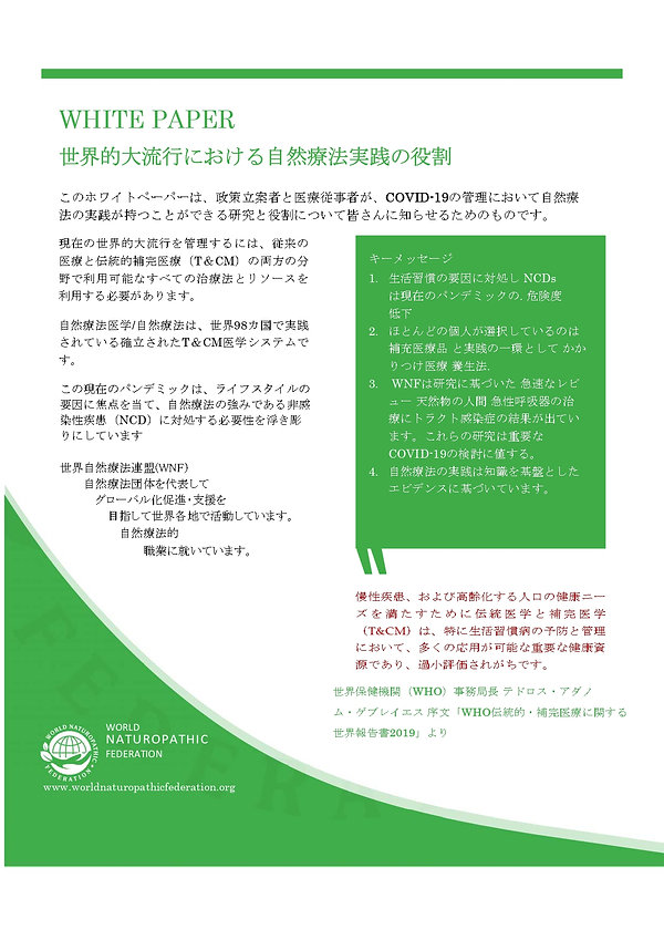 日本語WHITE PAPER_page-0001.jpg