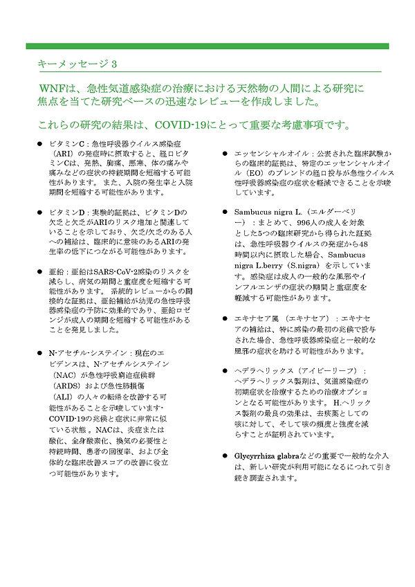 日本語WHITE PAPER_page-0003.jpg
