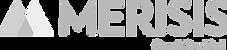 Merisis-logo_edited_edited.png