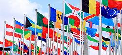 Flags-international-students.jpg