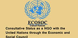 ECOSOC1_edited.jpg