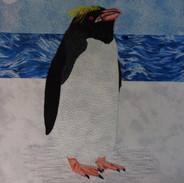 Penguin (Macaroni)
