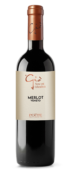 Merlot Veneto Igt Gio 2019 cl 75