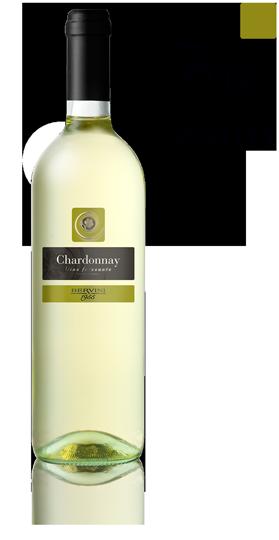 Chardonnay delle venezie IGT 2019 cl 75 - BERVINI