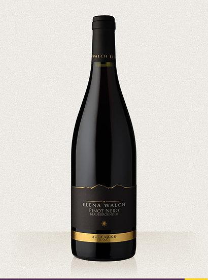 Pinot Bianco 2019 cl 75 - Elena Walch