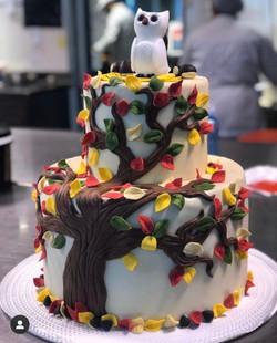 cake_design_bacilieri_04.jpg
