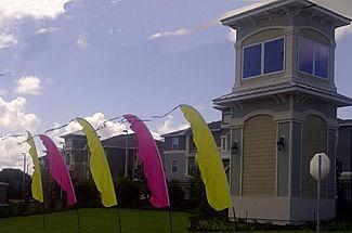 pinkflags-627x415.jpg
