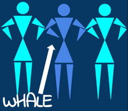 Show Art for Whale 2015
