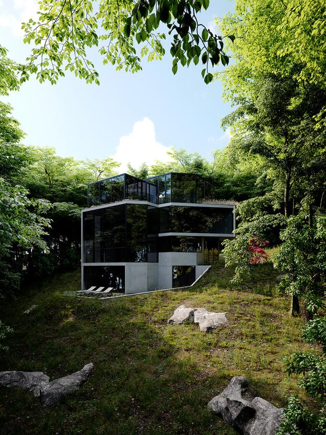 Ancerl-Studio-Crestwood-Residence-02.jpg